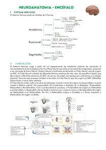 Neuroanatomia - Encéfalo