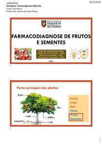 Aula 6_ Farmacodiagnose dos frutos e sementes (1)