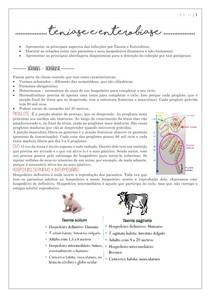 Infecções por enterobiase e tenias