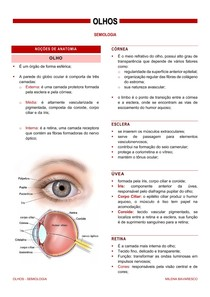 olhos - semiologia