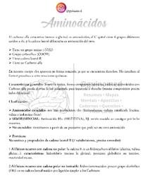 4 - Aminoácidos