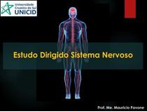 Estudo dirigido - Sistema Nervoso - 2021 1
