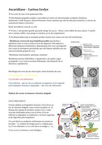 Ascaridíase, Tricuriase e Enterobius