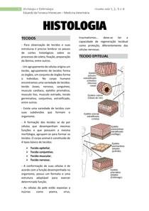 Tecido epitelial, glandular, conjuntivo e cartilaginoso