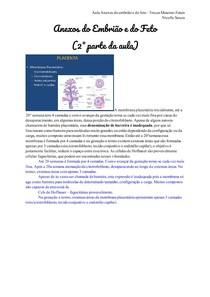 Transcrição_ Anexos do embrião e do feto