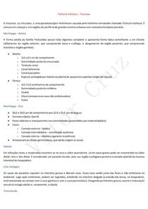 Trichuris trichiura - Tricurose