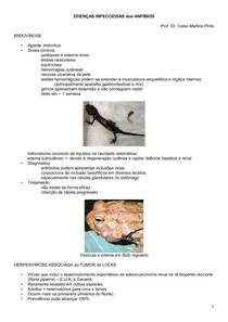 3-DOENÇAS INFECCIOSAS dos ANFÍBIOS
