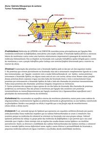Membrana plasmática, seus componentes químicos e funções