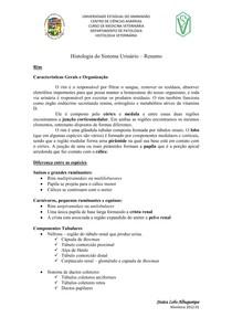 Histologia do Sistema Urinário resumo