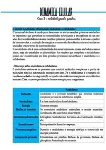 DINAMICA CELULAR- Caso 3 metabolizando ganhos - objetivos