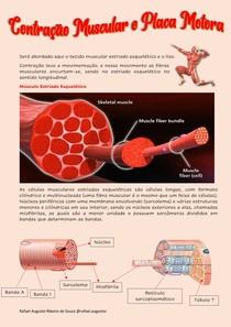 Fisiologia Contração Muscular e Placa Motora