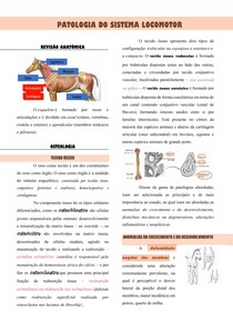 Aula - sistema locomotor (osso e articulação)