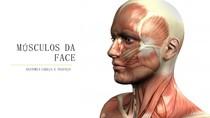 MÚSCULOS DA FACE - ANATOMIA CABEÇA E PESCOÇO