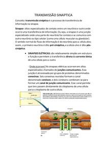 Resumo neurociências - transmissão sináptica