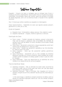 Generalidades - Sistema Esquelético