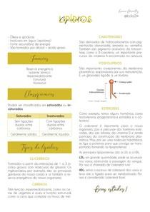 Resumo | Lipídios