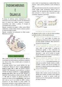 Resumos Biocel