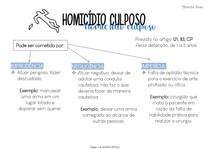 HOMICÍDIO CULPOSO