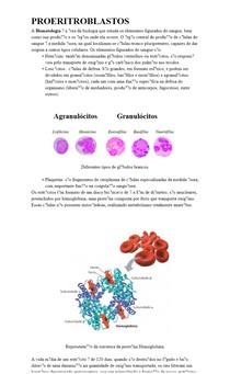 Proeritroblastos