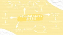 Mapa mental Vasodilatadores diretos