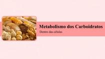 Metabolismo dos Carboidratos dentro das células