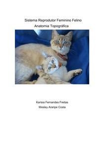 Sistema Reprodutor Feminino Felino