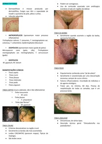 MICOSES SUPERFICIAIS - DERMATOFITOSES - DERMATOLOGIA