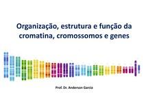 Estrutura e função da cromatina, genes e cromossomos