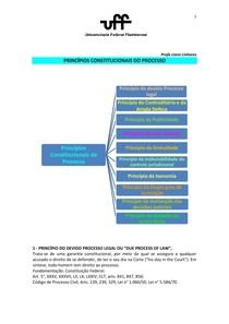 Princípios constitucionais do processo - RESUMO UFF (Liane Linhares)