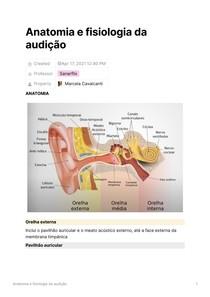Anatomia e fisiologia da audição