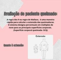 Regra dos nove (Wallace)