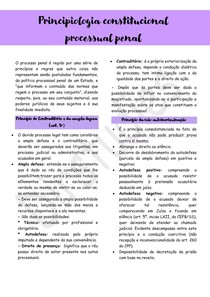 Princípios Processuais - Processo Penal
