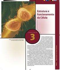 Capítulo 3 - Estrutura e Funcionamento da Célula