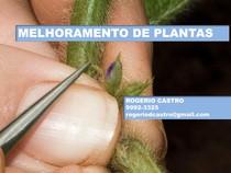 AULA 1 IMPORTANCIA DO MELHORAMENTO DE PLANTAS