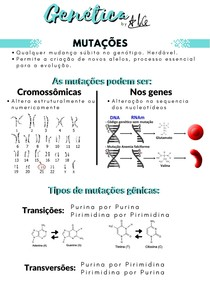 Genética 04 - Mutações
