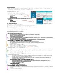 Resumo Fluxograma no tratamento de diabetes