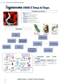 Trypanosoma cruzi & Doença de Chagas - RESUMO