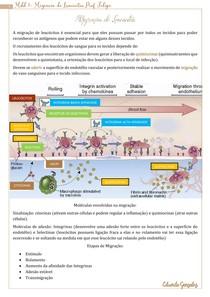 MDD1- 3 2-Migração de Leucócitos