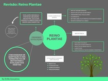 RESUMO: REINO PLANTAE I