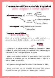 Tronco Encefálico e Medula Espinhal