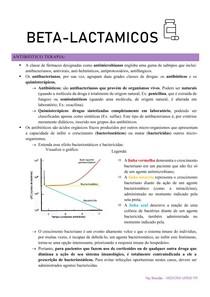 antibiotico beta lactamicos