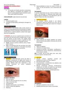 Palpebra_orbita_vias lacrimais ( doenças )