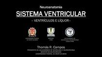 Sistema Ventricular e Líquor