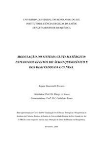 MODULAÇÃO DO SISTEMA GLUTAMATÉRGICO:  ESTUDO DOS EFEITOS DO ÁCIDO QUINOLÍNICO E  DOS DERIVADOS DA GUANINA