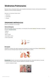 Síndromes pulmonares. Brônquicas, pulmonares e pleurais.