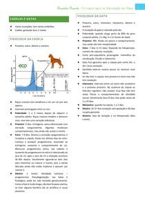 Reprodução de cadelas e gatas