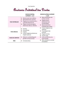 Incisivos - Anatomia Individual dos Dentes
