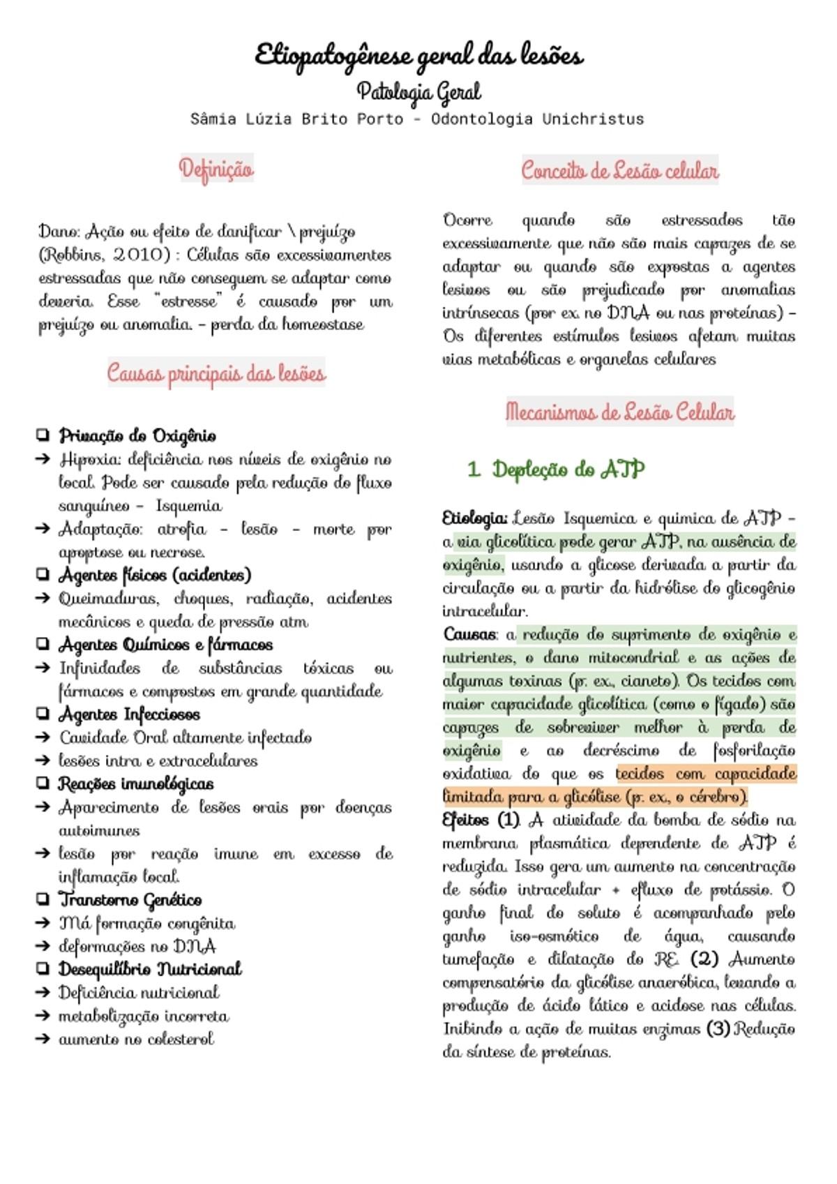 Pre-visualização do material Etiopatogênese geral das lesões - página 1