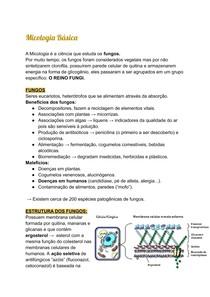 Micologia Básica