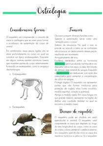 OSTEOLOGIA-RESUMO